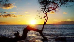 カップル旅行にオススメハワイのロマンチックスポット5選